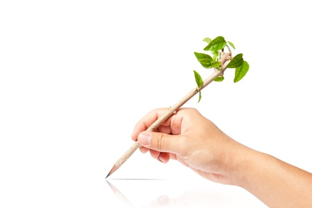 creative pencil with green tree on white backgorund Stock Photo - 13749094