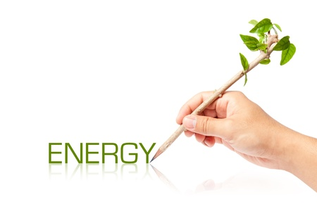 Energy wording with creative pencil with green tree on white backgorund photo