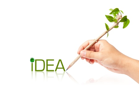 Idea wording of creative pencil with green tree on white backgorund