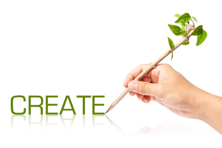 creative pencil with green tree on white backgorund Stock Photo - 13749127