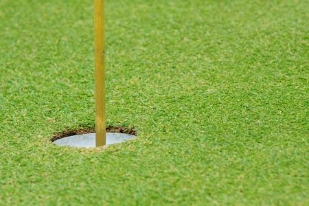 Beautiful green grass pattern of golf course Stock Photo - 13903305