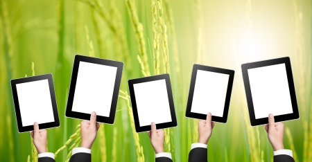touchpad: An empty tablets with nature background