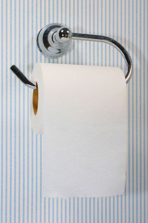 latrine: Toilet Paper on a hanger against a pinstriped wall Stock Photo