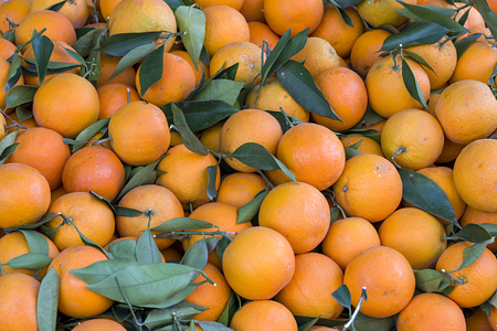 Oranges on a Turkish farmers market