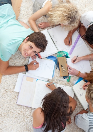 Group of Teenagers studying together Stock Photo - 10074042