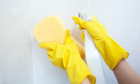Close-up of a woman cleaning with a sponge and detergent spray photo