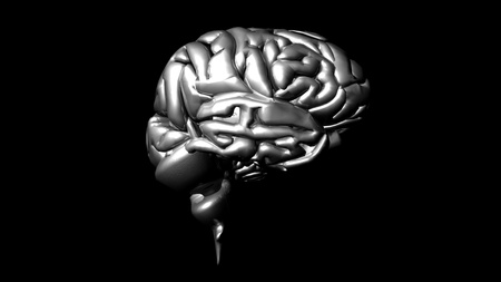 highly detailed animation of a human brain Stock Photo - 10075820