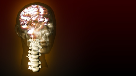 highly detailed animation of a human brain Stock Photo - 10076042