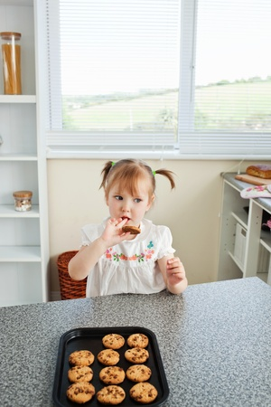 Cute girl sitting in front of cookies Stock Photo - 10134786