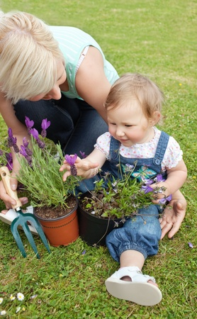 Beautiful mother showing her daughter a purple flower Stock Photo - 10175741