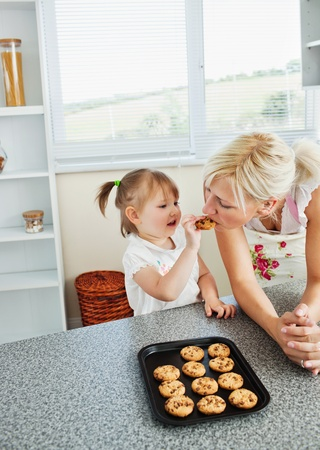 Pretty mother baking cookies with her daughter Stock Photo - 10175827