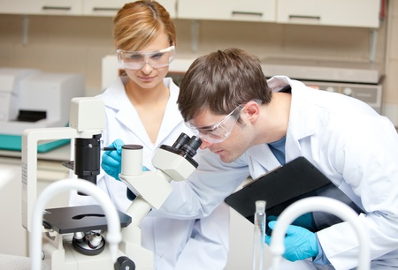 analyst: Two scientists observing something with a microscope