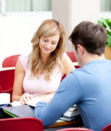 Portrait of two students studying together Stock Photo - 10171782