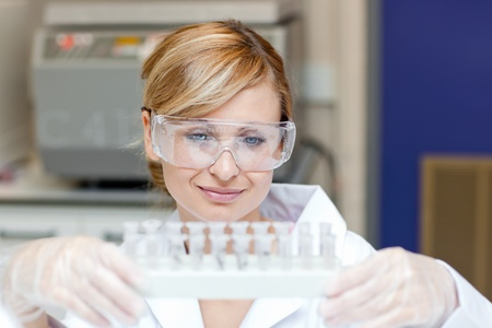 Concentrated caucasian female scientist holding samples Stock Photo - 10170855