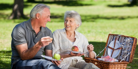 picnicking: Retired couple  picnicking in the garden