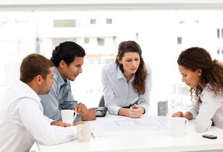 Four charismatic architects looking at plans together Stock Photo - 10196652