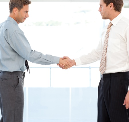 concluding: Two partners concluding a deal by shaking hands