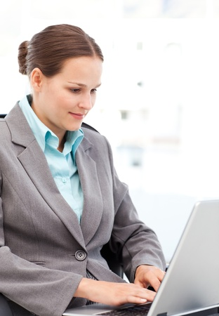 Young businesswoman working on the laptop in her office Stock Photo - 10196925