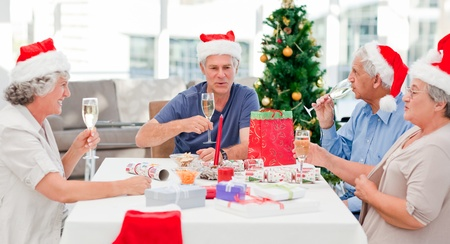 Seniors on Christmas day at home Stock Photo - 10196916