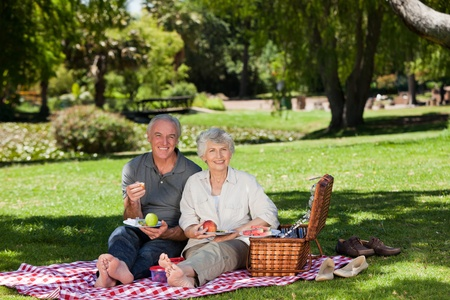 Retired couple  picnicking in the garden Stock Photo - 10190368