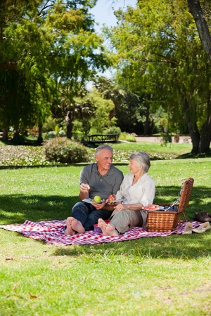 Elderly couple  picnicking in the garden Stock Photo - 10197461