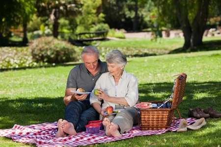Elderly couple  picnicking in the garden Stock Photo - 10197433