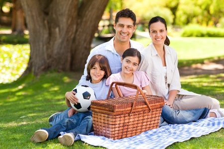 family and health: Happy family picnicking in the park