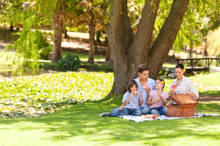 Cute family picnicking in the park photo