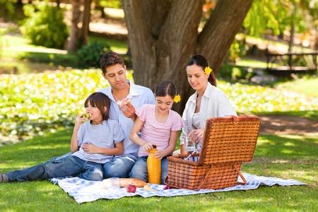 family in park: Lovely family picnicking in the park