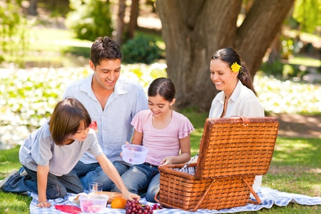 picnicking: Lovely family picnicking in the park