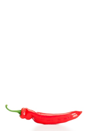 Sharped red pepper on a white background photo