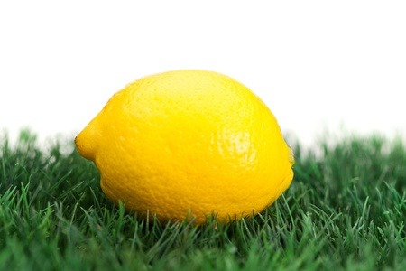 Yellow lemon on grass on a white background photo
