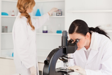 Dark-haired scientist looking through a microscope with her assistant in a lab Stock Photo - 10198911