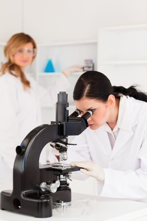 Two female scientists carrying out an experiment looking through a microscope photo