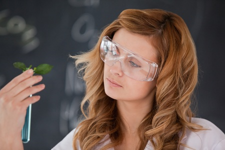 Attractive female scientist conducting an experiment in a lab photo