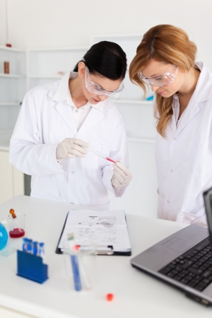 laboratory coat: Two scientists observing a test tube in a lab Stock Photo