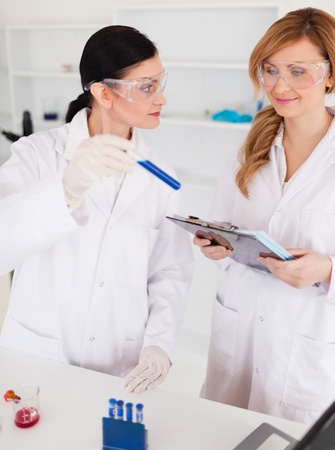 Two scientists observing a blue test tube in a lab photo