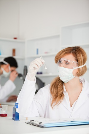 Scientists carrying out an experiment in a lab photo