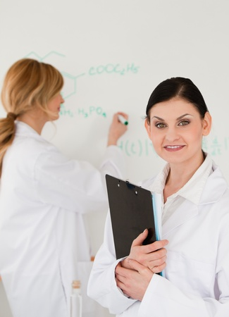 Young scientist writting a formula helped by her assistant in a lab Stock Photo - 10195253