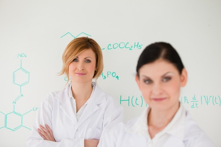 Two women posing in front of a white board in a lab Stock Photo - 10198147