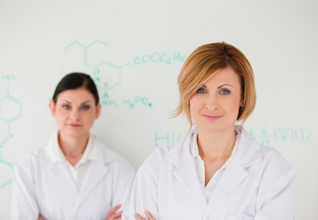 Two attractive women in front of a white board in a lab Stock Photo - 10197940