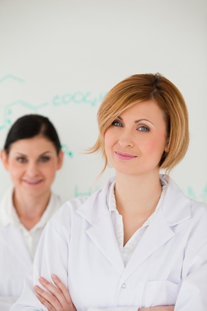 Attractive women in front of a white board in a lab Stock Photo - 10198673