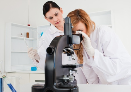 Cute female scientist looking through a microscope helped by her assistant photo