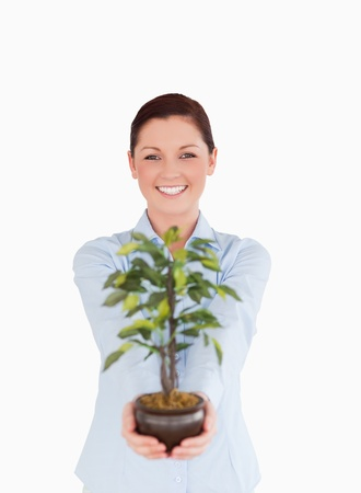 Good looking red-haired female holding a houseplant while standing on a white background photo