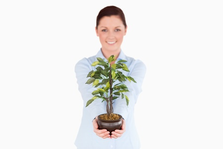 Attractive red-haired woman holding a houseplant while standing on a white background photo