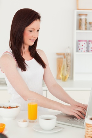 Young attractive red-haired woman relaxing with her laptop in the kitchen in her appartment photo