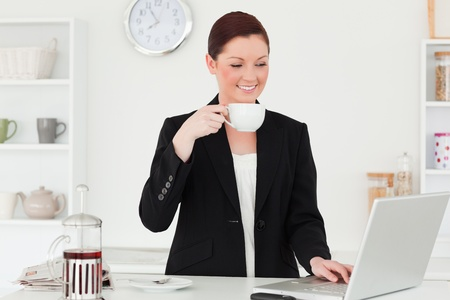 Good looking red-haired woman in suit relaxing with her laptop in the kitchen in her appartment photo