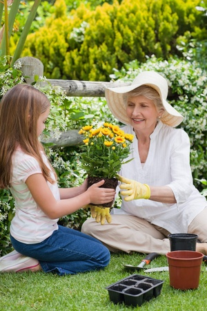 Grandmother with her granddaughter working in the garden Stock Photo - 10205866