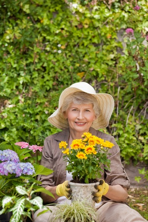 Retired woman working in the garden photo
