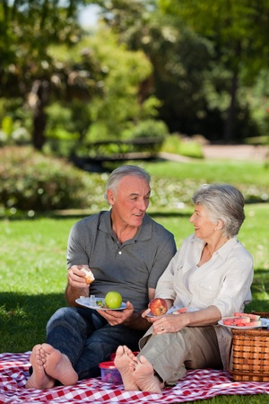 Elderly couple  picnicking in the garden  photo